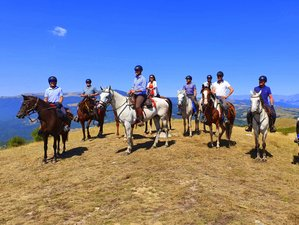 8 Day Kingdom of Thracians Horse Riding Holiday in Bulgaria