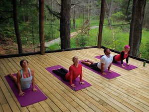 3 jours en week-end stage de yoga en Ontario