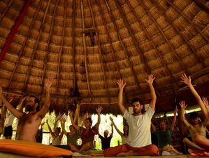 6 Days Detox and Yoga Retreat in India