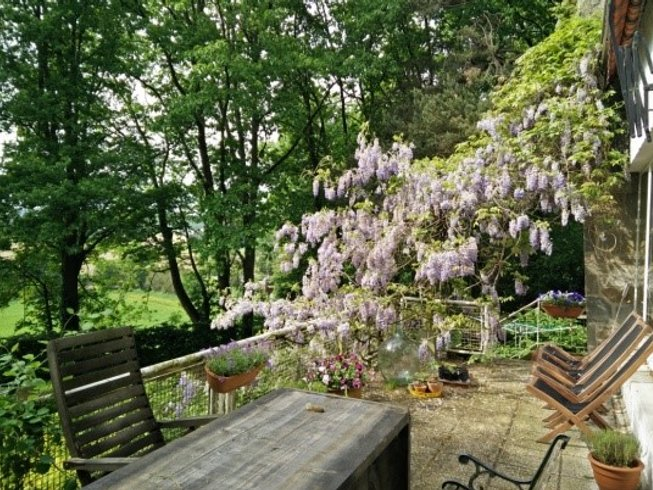 3 Days Shuniya Kundalini Yoga Weekend Retreat in Belgium