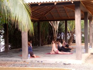 15 Tage Yoga Retreat für Anfänger und Fortgeschrittene in Bentota, Sri Lanka