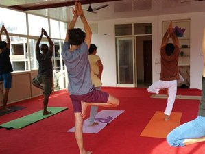 7 Days Ayurveda and Yoga Retreats in Goa, India