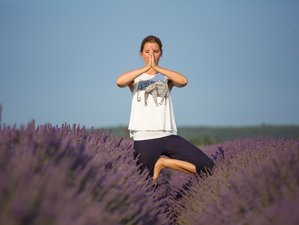3 Days Yoga and Nature Retreat in Provence, France