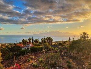 2 Day Ayahuasca Retreat in Tenerife