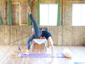 29 Days 200hr Vinyasa Yoga Teacher Training in Rishikesh