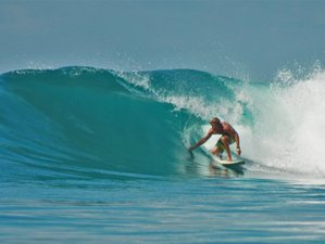 28 Days Stay and Surf Camp in Canggu, Bali