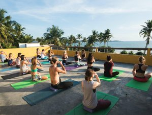 8 Day Intensive Breathwork Yoga Retreat Explore, Feel, and Reconnect in Weligama, Southern Province
