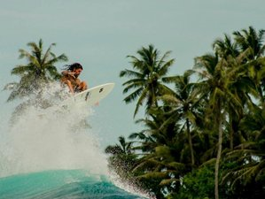 6 Days Authentic Mentawai Surf Camp