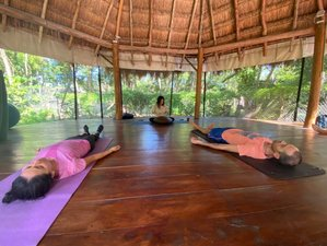 6 Day Diving and Yoga Retreat in Cozumel Island