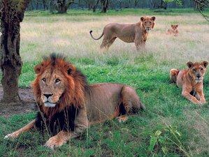 2 Days Overnight Hell's Gate and Lake Nakuru National Park Safari in Kenya