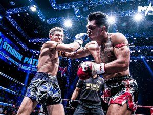 1 Year Special Deal Western Boxing, Muay Thai, and Much More in Phetchabun, Thailand