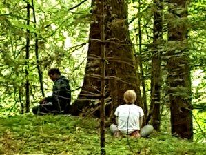 8 Days Mindfulness and Shinrin Yoku (Forest Therapy) Yoga Retreat in Scotland, UK