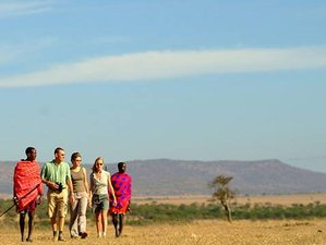 5 Days Budget Camping Safaris in Kenya