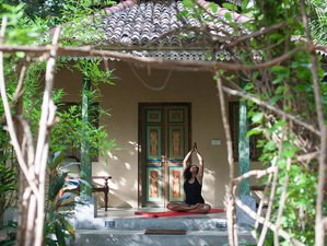 7 Days Meditation and Yoga Retreat in Arugam Bay, Sri Lanka