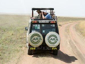 11 días de safari de vida salvaje y cultura en Tanzania
