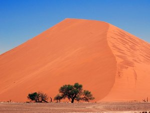 9 Days Orange Dunes of Namibia Safari