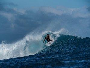 7 Days Surf Guiding in Nadi, Fiji