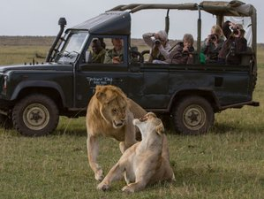 4 Days Astounding Safari in Kenya