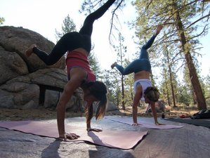 3 Days Rock Climbing and Yoga Retreat in California