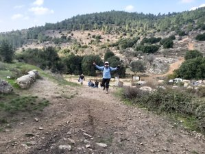 10 Day Adventure and Culture Guided Motorbike Tour in Israel