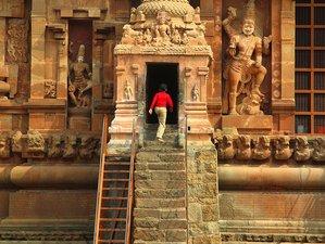 12 Days Pilgrimage and Yoga Retreat India