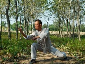 6 Months Shaolin Kungfu, Tai Chi & Wing chun Training at Maling Mountain, Xinyi, Jiangsu, China