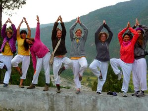 9-Daagse Maa Ganga Yoga Tour in India