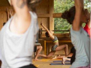 5 jours en stage de yoga, ateliers psycho-énergétiques et sonothérapie pour le nouvel an, Drôme