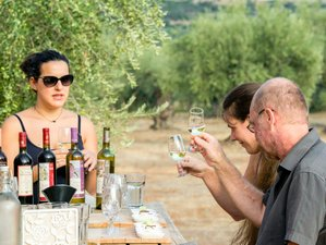 2 Day Organic Farm To Table Greek Cooking and Wine and Olive Oil Tasting in Laconia, Peloponnese
