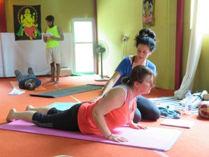 14 Days 100-Hour Yoga Teacher Training in Rishikesh, India