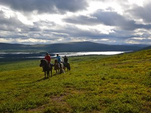 2 Days Summer Horse Riding Holiday in the Mountains of Kebnekaise, Sweden