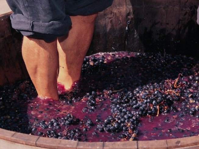 5 Days Wine Tasting and Culinary Holiday in Spain