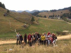 7 Days Hippocrates Lifestyle Yoga Retreat in Romania