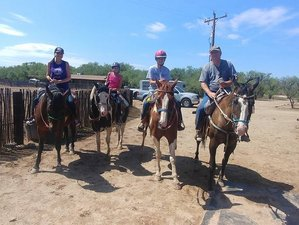 8 Day Family Horseback Riding and Ranch Vacation in Benson, Arizona