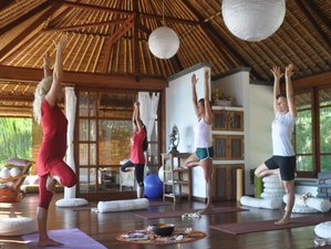 7 Days Sacred Waters Diving & Yoga Retreat Bali