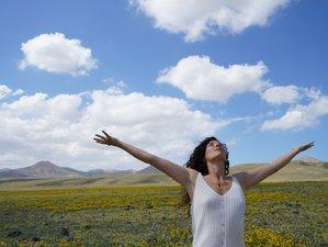 3 jours en week-end de yoga du son et chants méditatifs à Saint-Esteben, Pays Basque