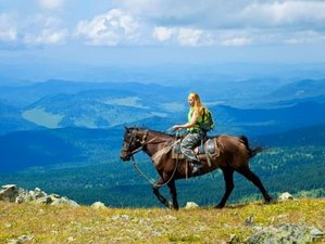 4 Days True Paradise Horse Riding Holiday for All Levels in Carpathian National Park, Ukraine