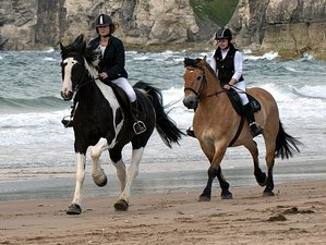 7 Days Signature North Coast Horse Riding Holiday in Ireland and Northern Ireland, UK