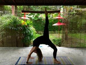 28 Days 200-Hour Yoga Teacher Training in Thailand