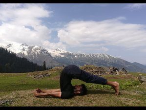2 Day Online Yoga Philosophy, Buddhist Meditation, and Ashtanga Yoga Retreat