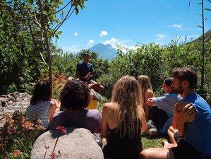 7 Days Ayurveda, Nutrition, and Yoga Retreat in Lake Atitlán, Guatemala
