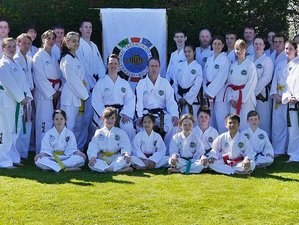 3 Days UK Taekwondo Training
