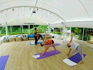 5 Days Raw Food Fast Detox Retreat in Phuket, Thailand