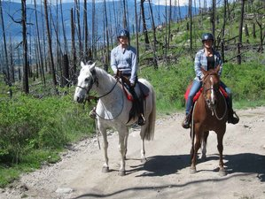 4 Days Adventurous and Relaxing Horseback Riding Vacation in British Columbia, Canada