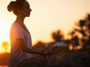 7 Day Ayahuasca, Yoga, and Meditation Retreat in Las Terrenas