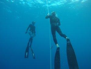 6 Tage Überlebensapnoe und Open Water Training in Santa Teresa
