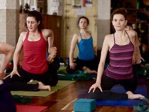 8 Days Revel in the Rasas Yoga Retreat in Costa Rica