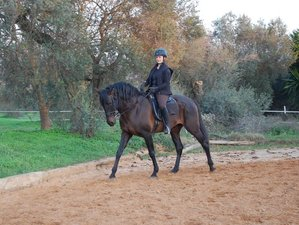 7 Days Horse Riding, Mindfulness, & Yoga Retreat in Seville, Spain