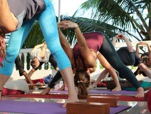 30 Days 300-Hour Certified Ashtanga Yoga TTC in Goa, India