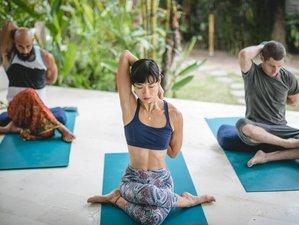 50 Days 500-Hour Yoga Teacher Training and Holistic Business Fundamentals in Bali, Indonesia